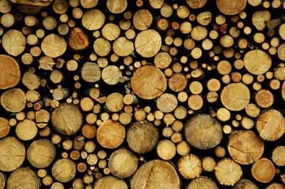 кубатура круглого леса